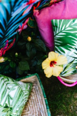 kaboompics_Hibiscus Flower and Tropical Pillows.jpg